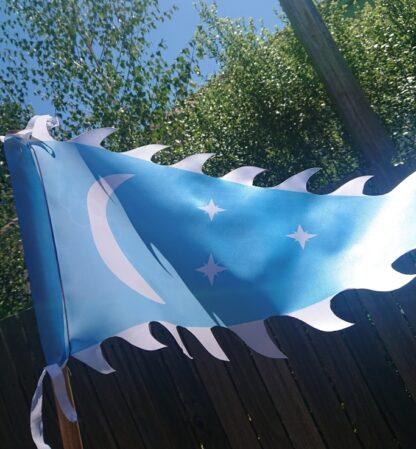 Blue War Banner